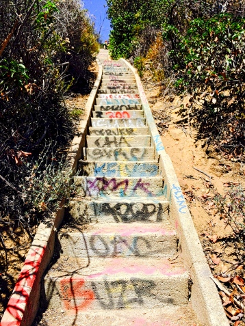 Stairs tagged by idiots