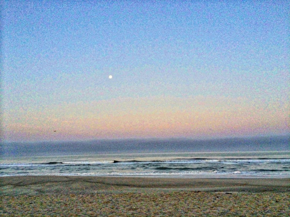 Moon setting in Oxnard early morning.