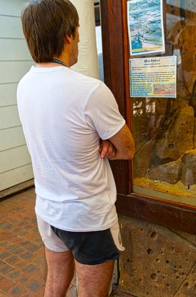 Australian Visitor (Hominus Pantalones Shortissmos)