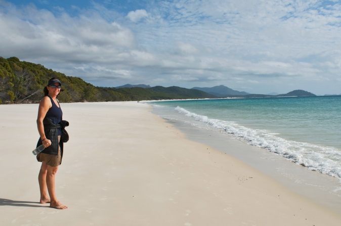 Brown Bear and the white sand beacn