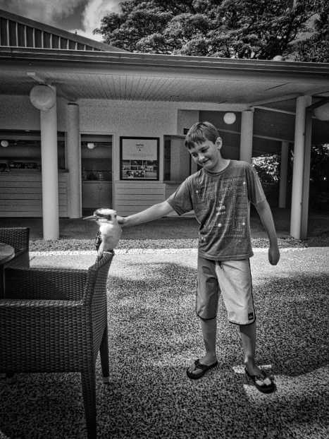 It's an optical illusion-no feathers were touched- but the bird was super mellow.
