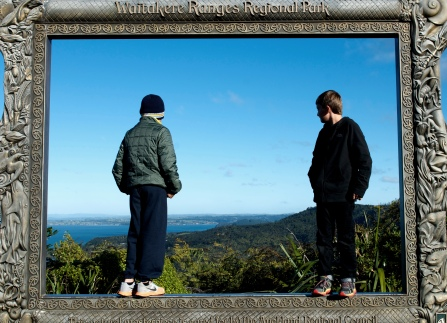 A picture frame outlining a stunning view- waitekere range